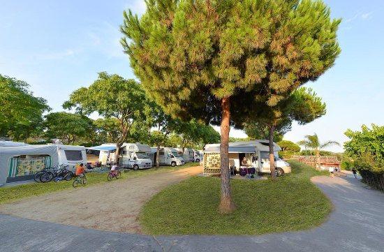 Piazzole del Camping Barcelona