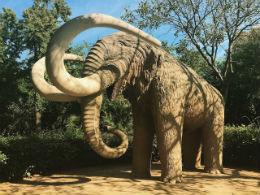 Il Mammuth al Parco della Ciutadella