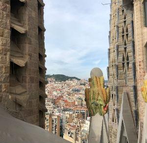 Vista dalle torri della Sagrada Familia